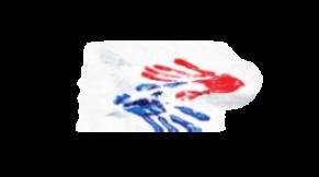Vlajkový projekt Bezpečné pohraničí