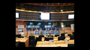 Propagace česko-polské spolupráce v Evropských institucích